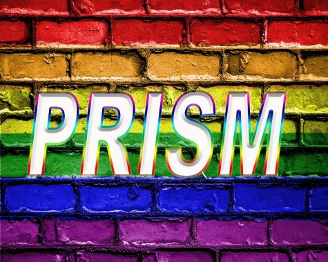Buster Highlight – PRISM