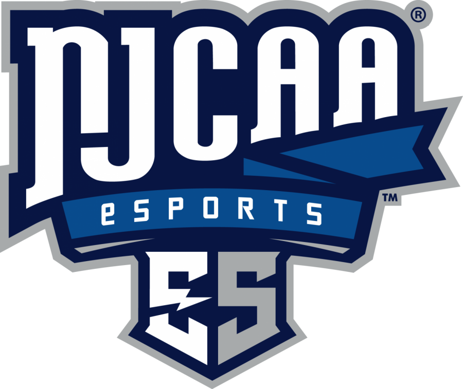 Image result for njcaa esports logo