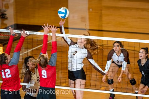 Abby Ellermenn taps the ball over the net to score against Liberal in the WAC championship.